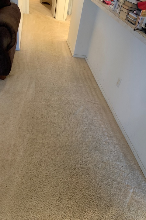Carpet Cleaning Magic - After