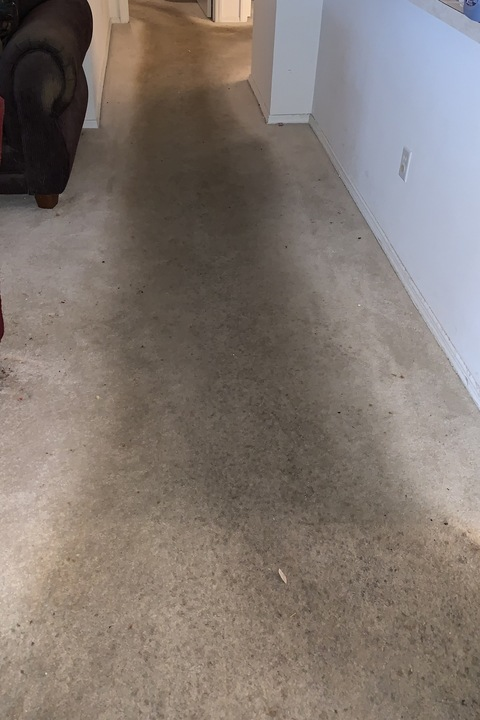 Carpet Cleaning Magic - Before