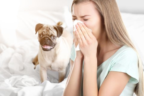 Don't Overlook These 3 Things If You Have Allergies.