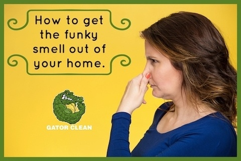 Easy tips to get that funky smell out of your home.