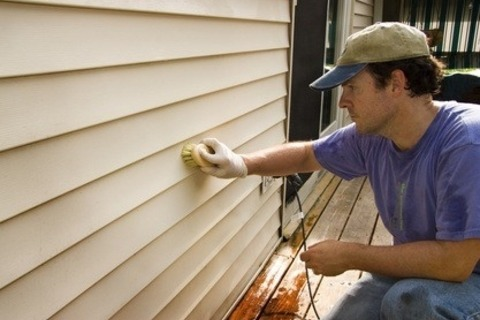 Green Tips to Removing Mold From Your Siding