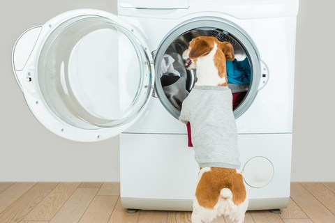 Why it is important to clean dryer vents regularly.